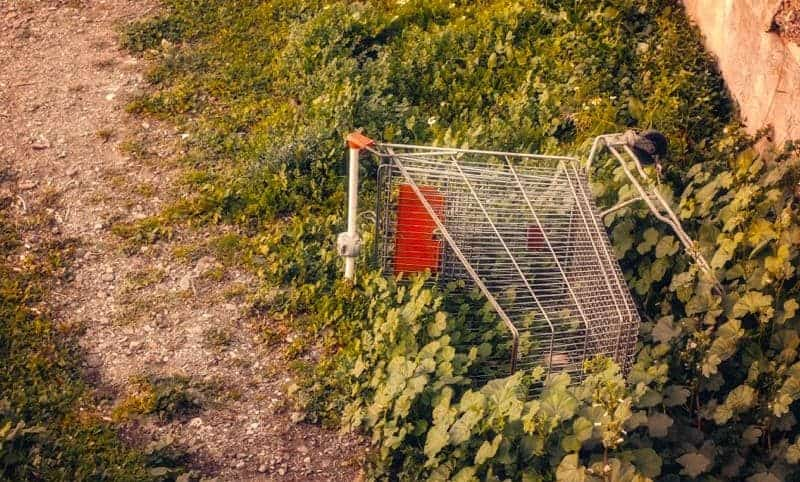 photo of an abandoned shopping cart