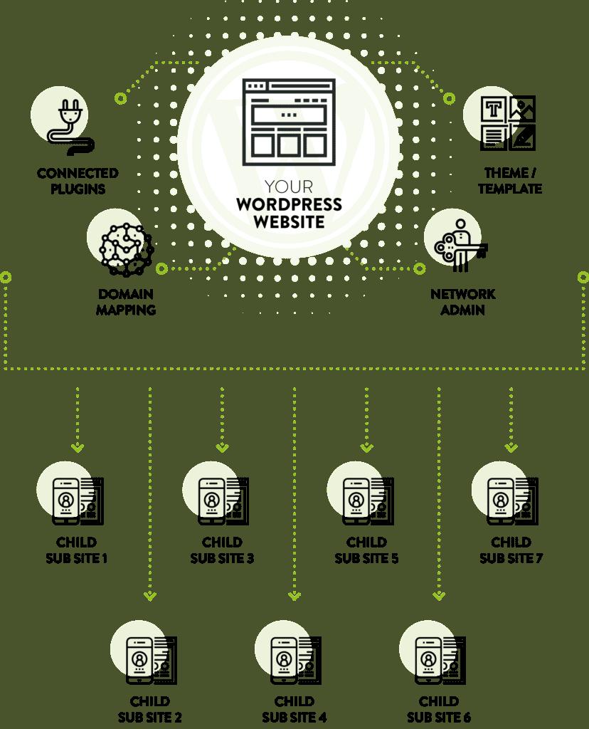 WordPress Multisite Process Diagram