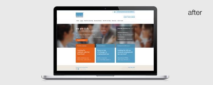 2013 llg website